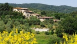 Holiday letting Agriturismo La Busca