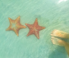 Holiday letting Casa del mar