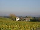 Holiday letting Au milieu des vignes Bordeaux Peyraguey Maison Rouge