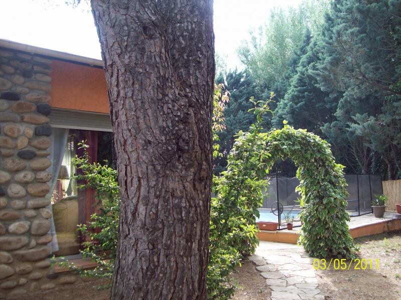Chambres D 39 H Tes Le Magnolia Location Vacances Europe