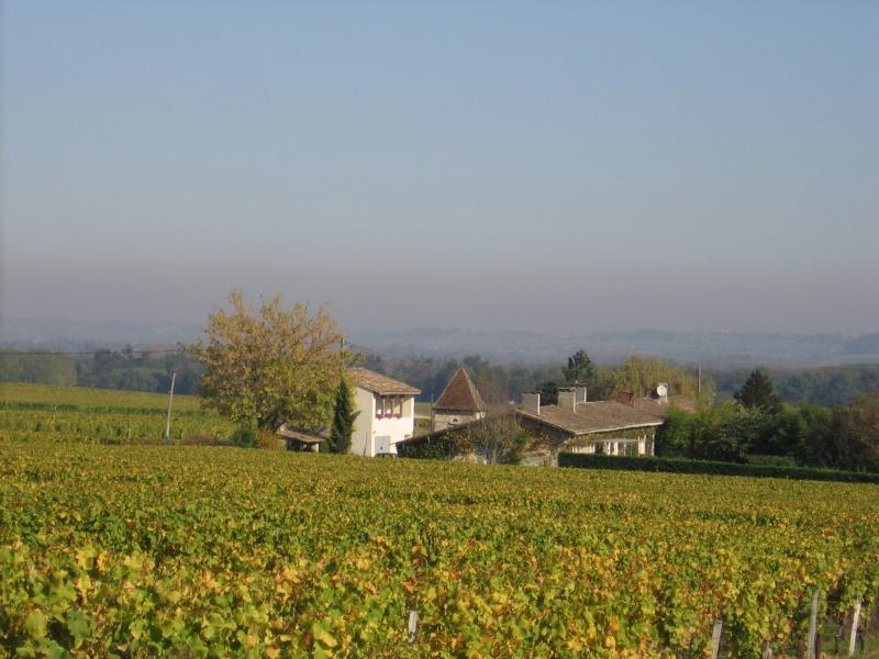 Au milieu des vignes bordeaux peyraguey maison rouge for Maison de l enfance bordeaux